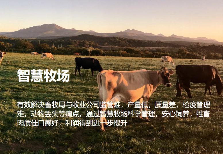 163888美高梅会员牧场解决方案--163888美高梅会员养殖云平台